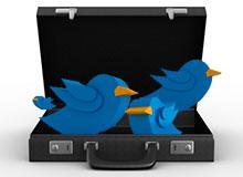 031313-social-media
